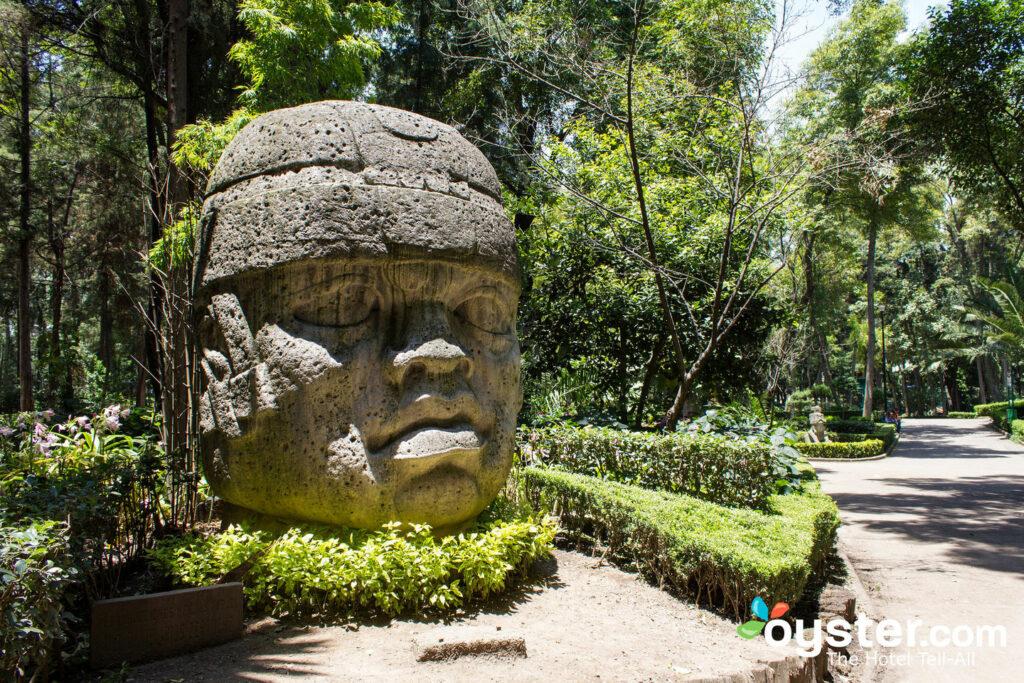 Parque Hundido, Mexico City/Oyster
