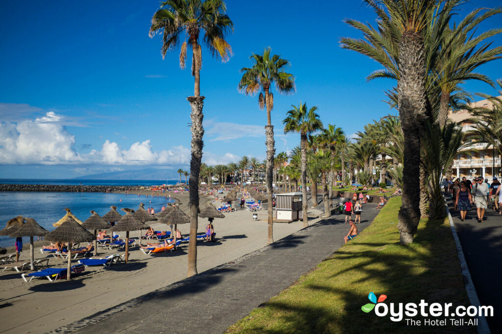 Playa de las Americas / Oyster