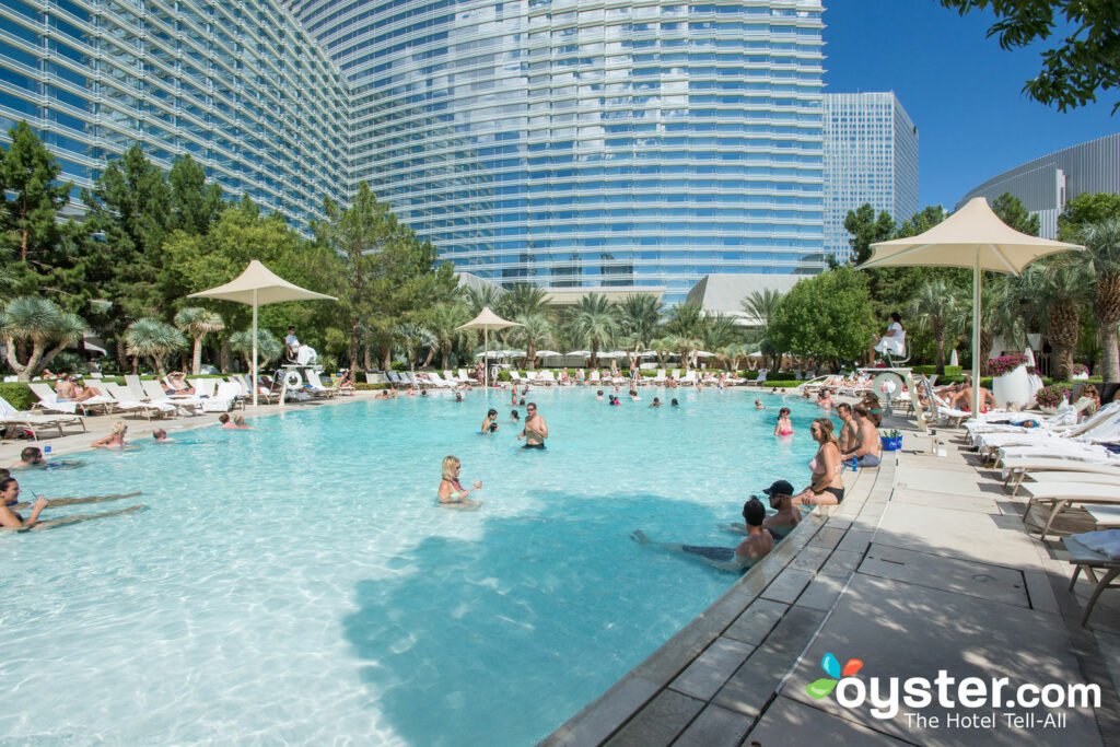 The Pool at ARIA Resort & Casino/Oyster