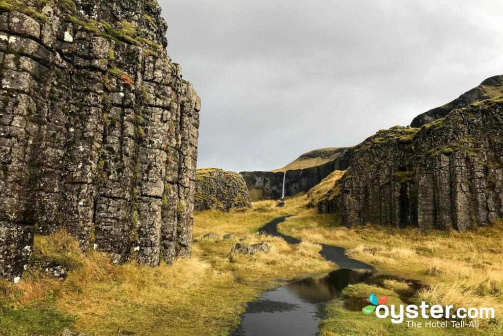 Islande / Huître