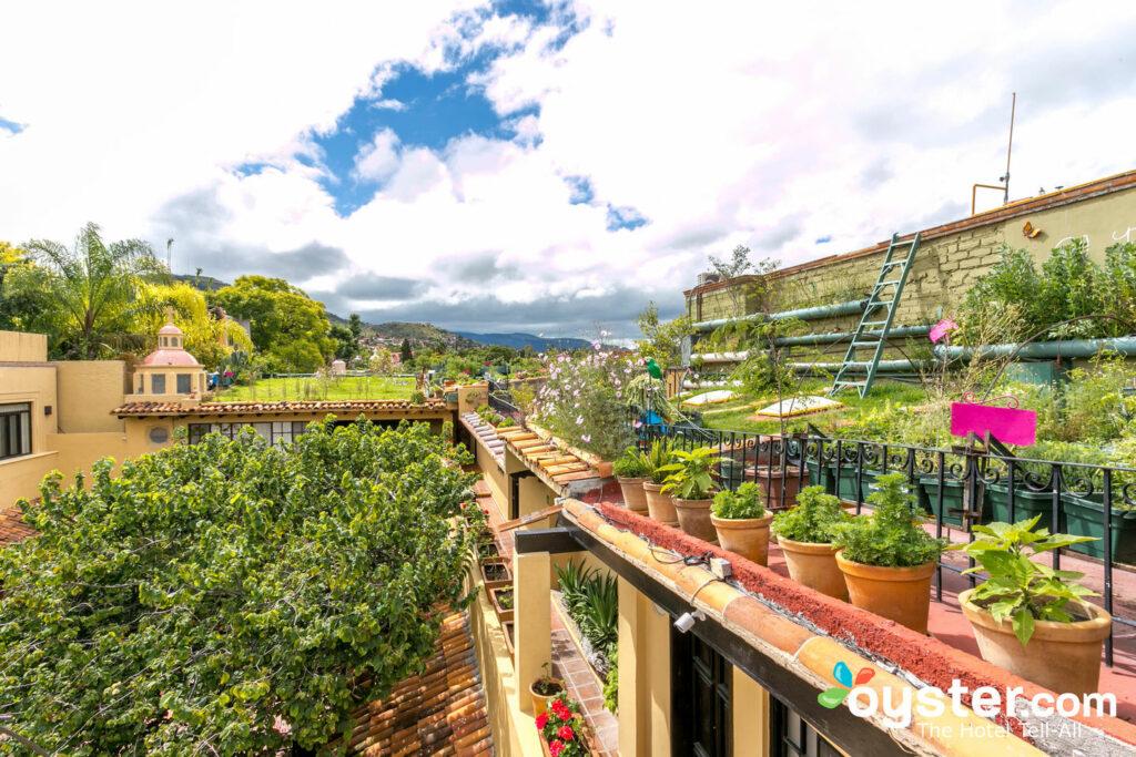 En la azotea de la Hacienda El Santuario, San Miguel de Allende / Oyster
