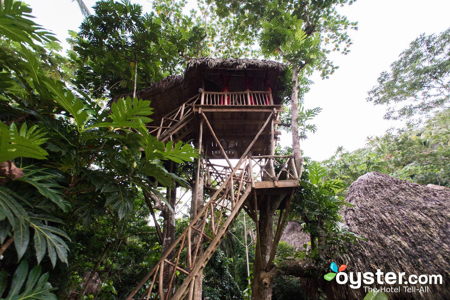 Dominican Tree House Village Review What To Really Expect If You Stay
