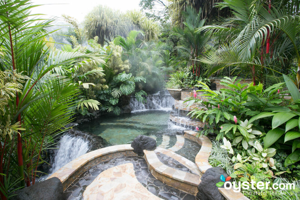 Hot Springs at Tabacon Grand Spa Thermal Resort/Oyster