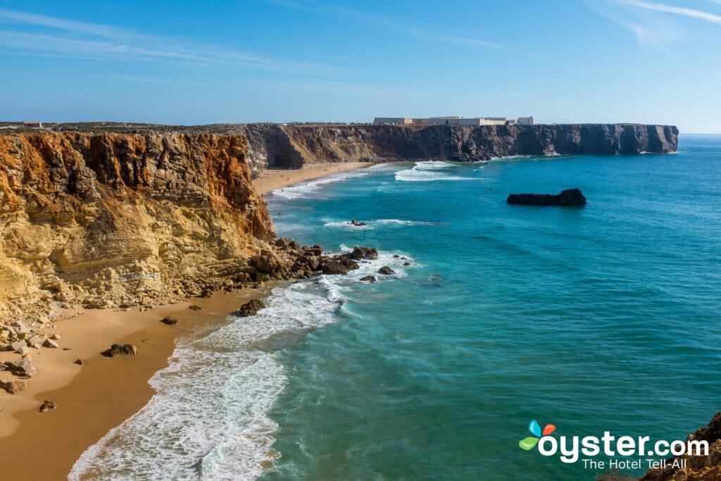 Die Algarve / Auster
