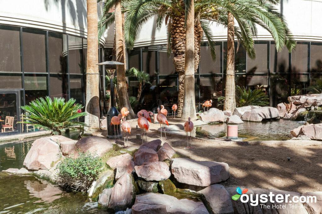 The Habitat at the Flamingo Las Vegas Hotel & Casino