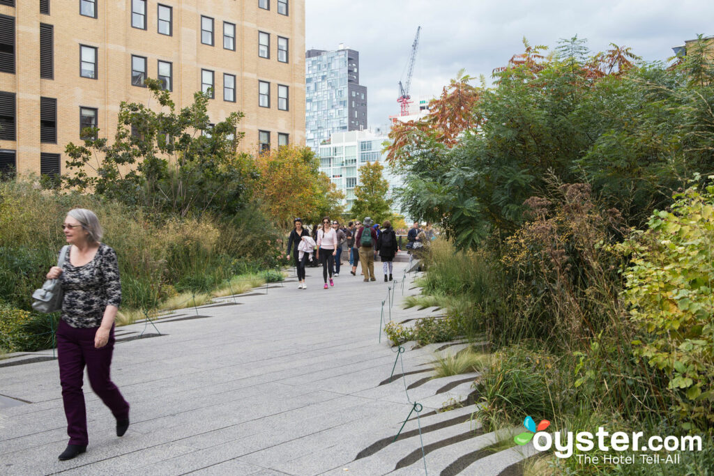 The High Line/Oyster
