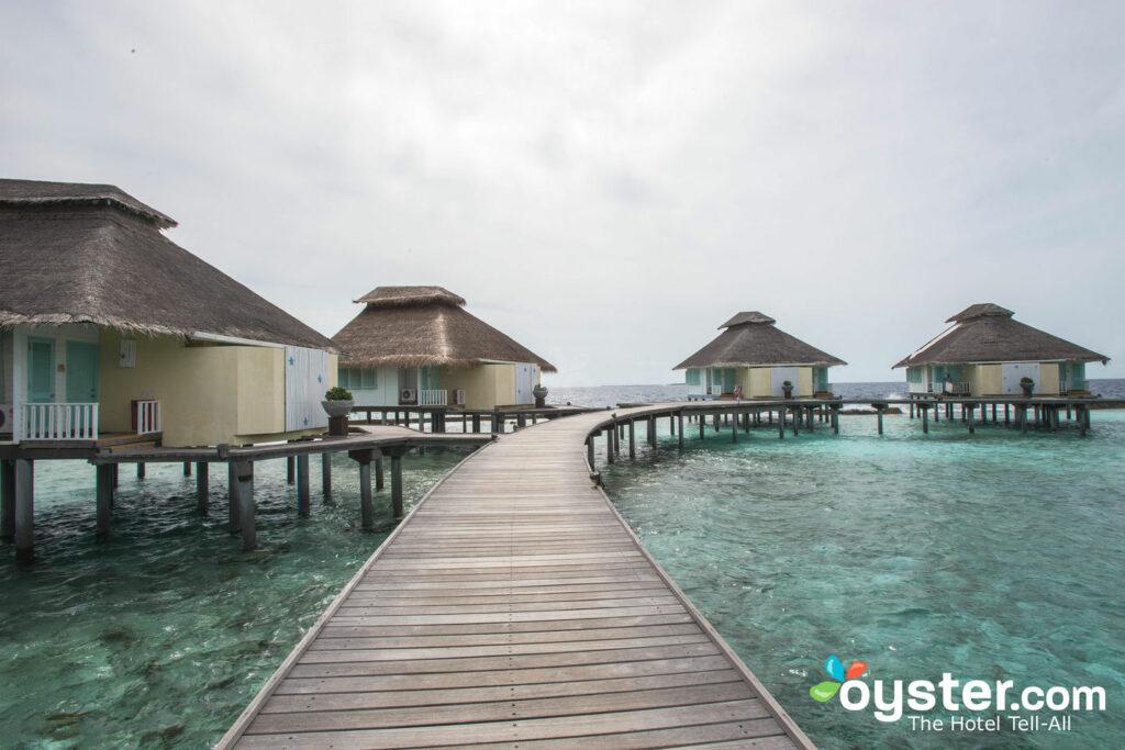 officiële winkel top kwaliteit nieuw goedkoop Ellaidhoo Maldives by Cinnamon Review: What To REALLY Expect ...