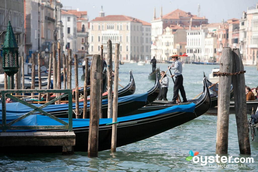 Venecia, Italia / Oyster