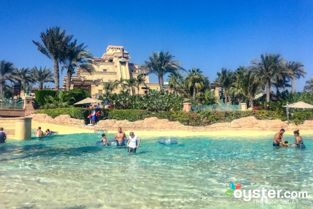 Atlantis, die Palme / Auster