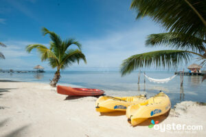 Portofino Beach Resort, Belize/Oyster