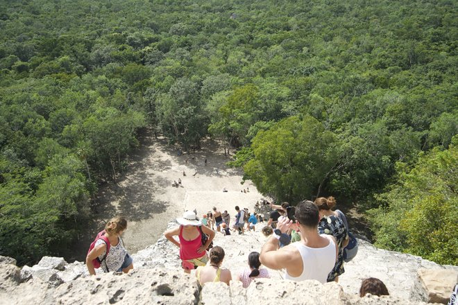 Top of the Mayan Ruins of Coba/Lara Grant