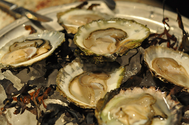Oysters; Charlotta Wasteson/Flickr