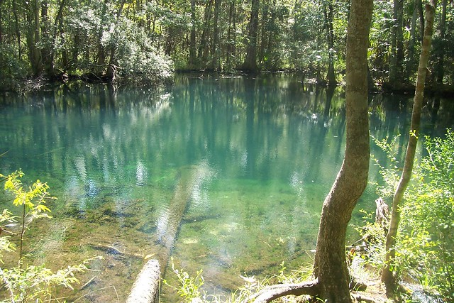 Shepard Spring, Florida; Paul Clark / Flickr