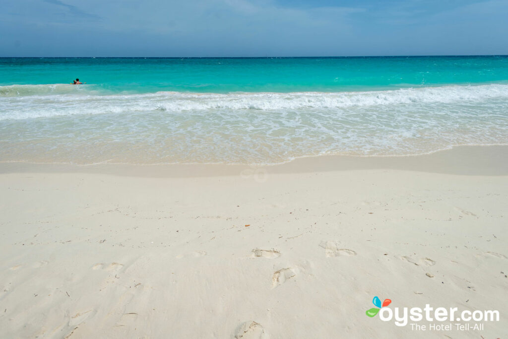 Best Beaches In Aruba Oyster