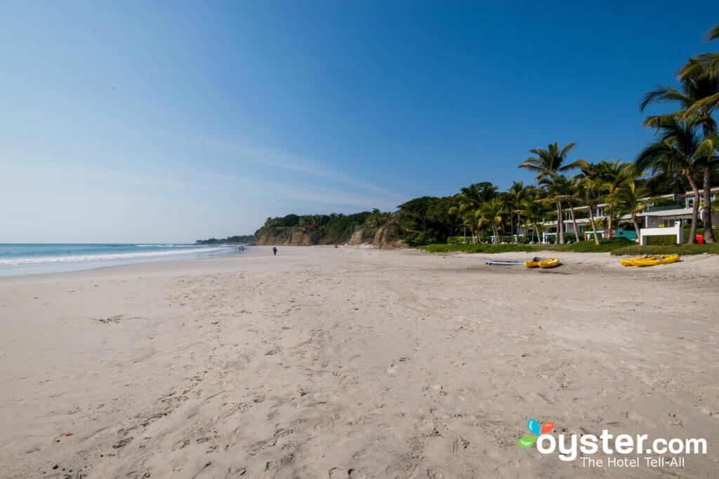Praia em W Punta de Mita / Oyster