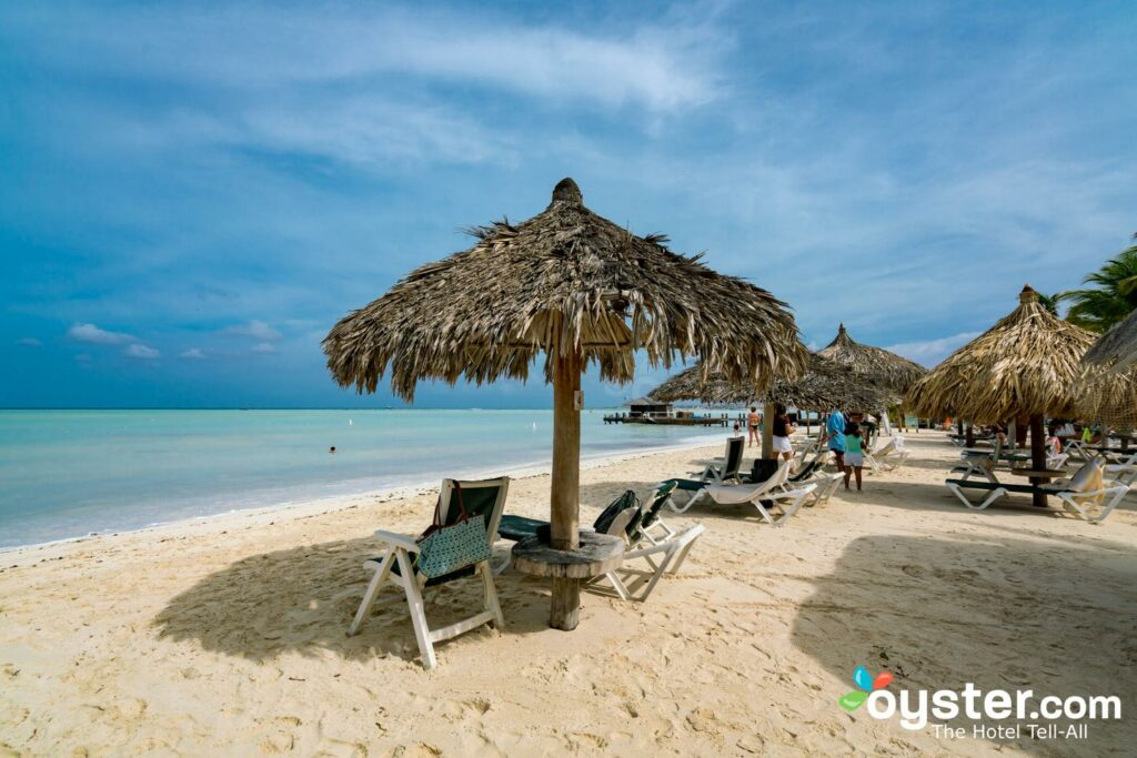 Plage au Barcelo Aruba / Huître