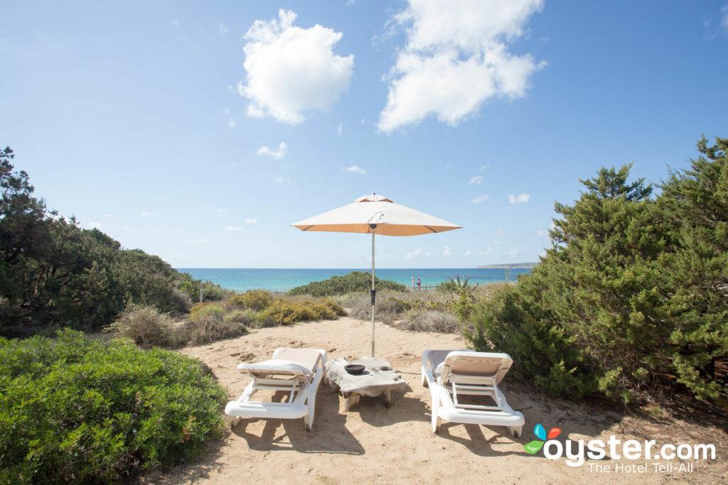 Garten im Talaya Formentera / Oyster