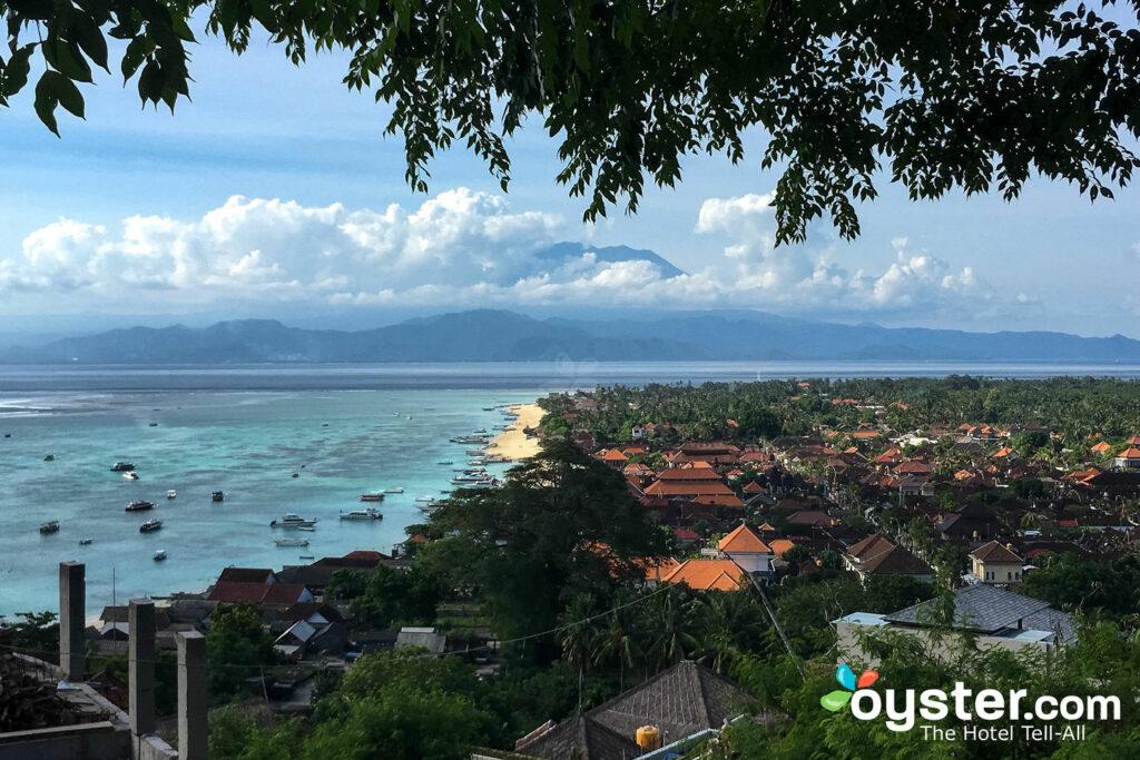 Nusa Lembongan ; Auster