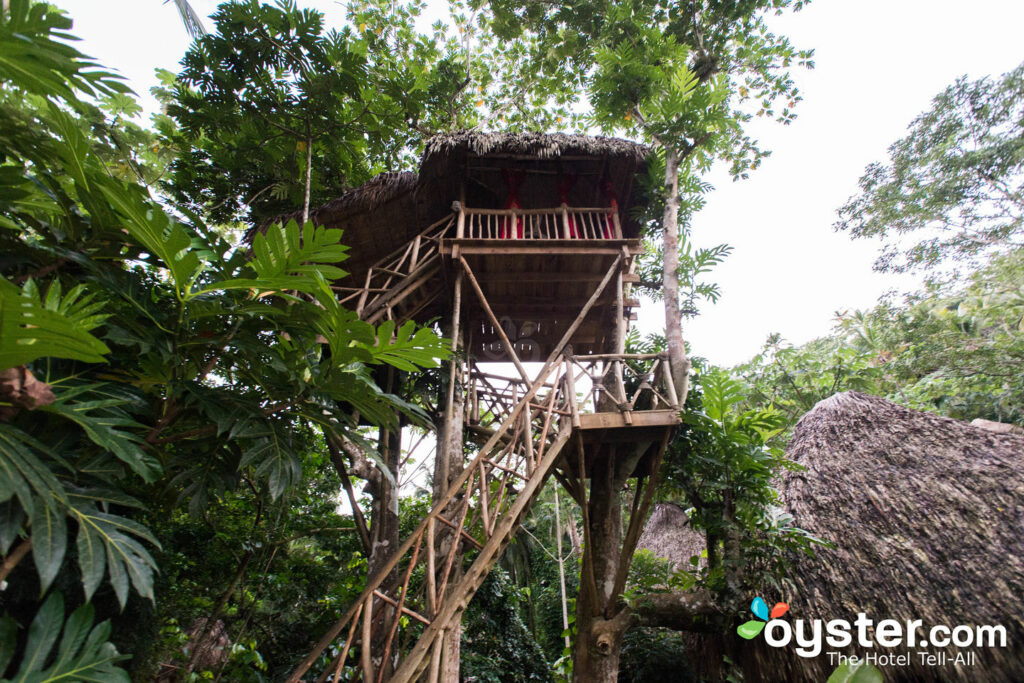 Dominican Tree House Village, Samana/Oyster