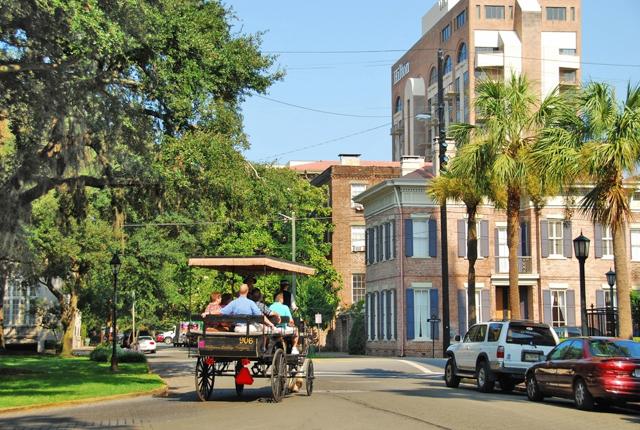 Savannah; faungg's photos/Flickr