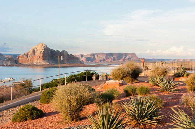 Lake Powell Resort/Oyster