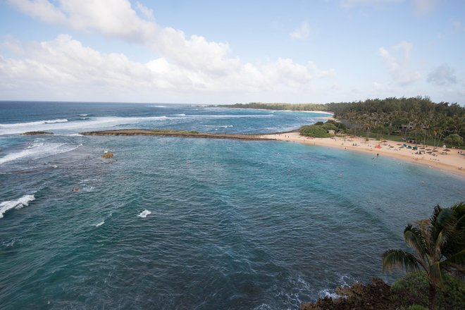 Beach at the Turtle Bay Resort/Oyster