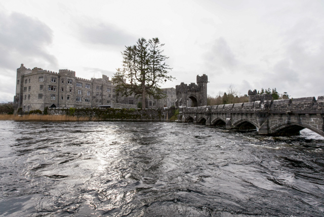 Grounds at the Ashford Castle/Oyster