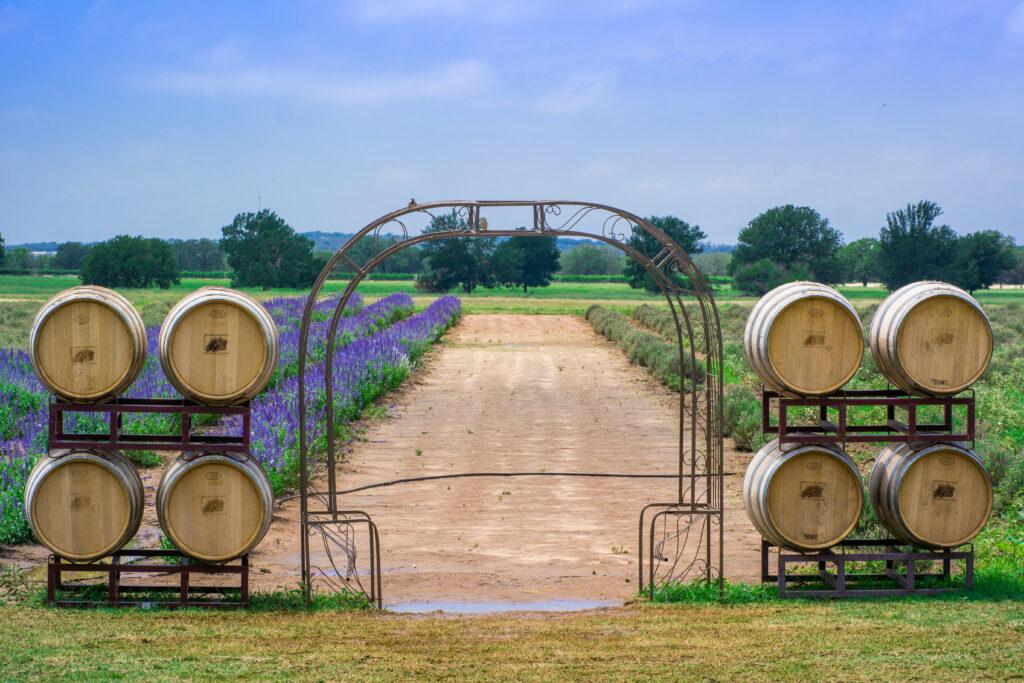 Becker Vineyards, Texas