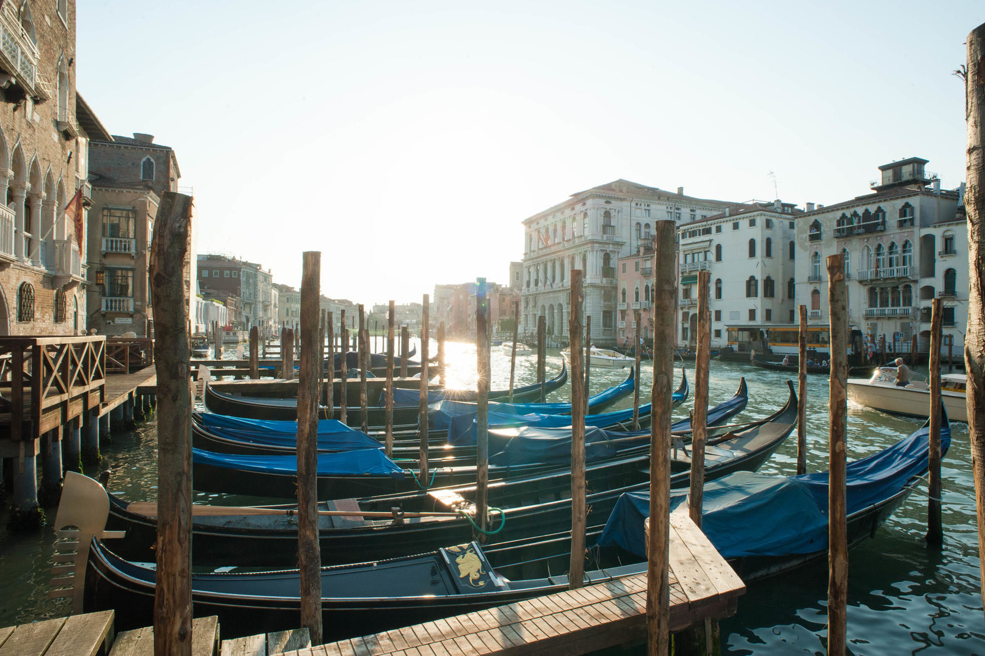 Gondolas docked on the Grand Canal in Venice in the late afternoon.