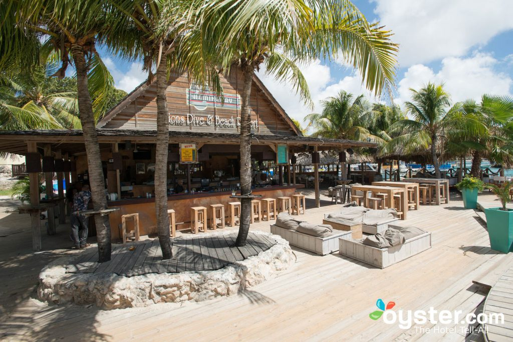 Lions Dive and Beach Resort/Oyster