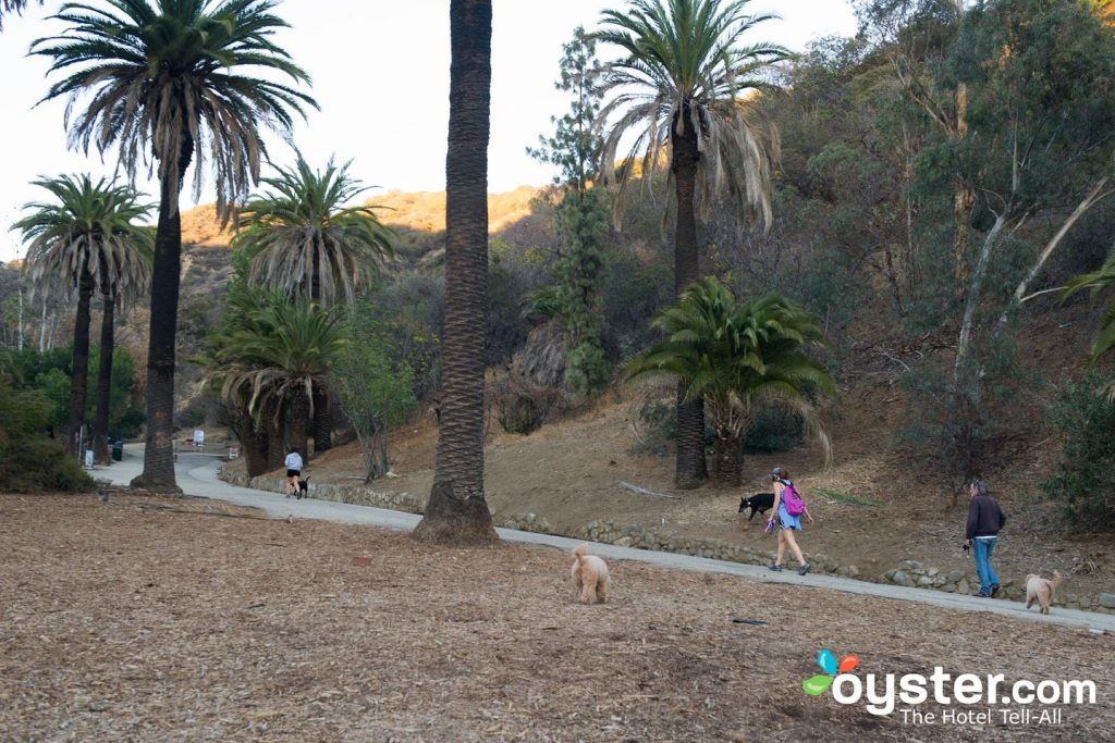 Runyon Canyon is one of LA's most popular outdoor destinations.