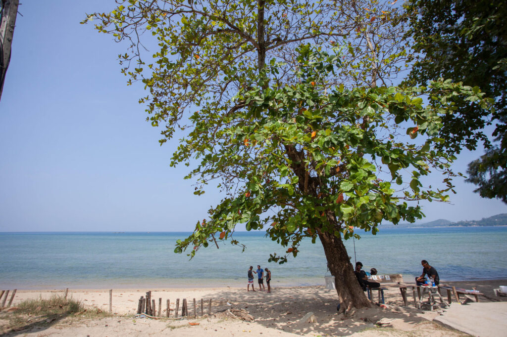 Kamala Beach at the Hyatt Regency Phuket Resort, Thailand