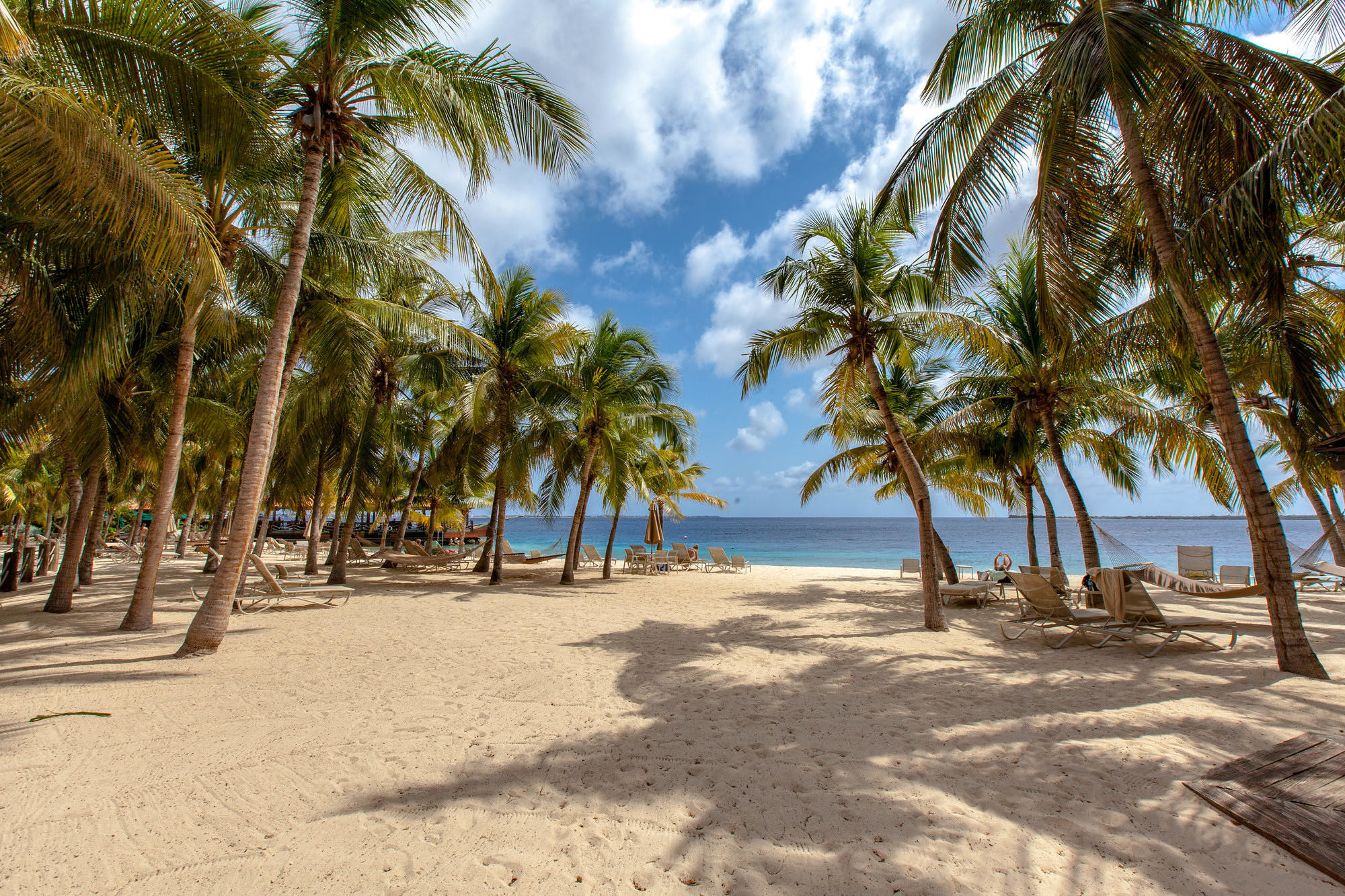 Beach at Harbour Village Beach Club, Bonaire