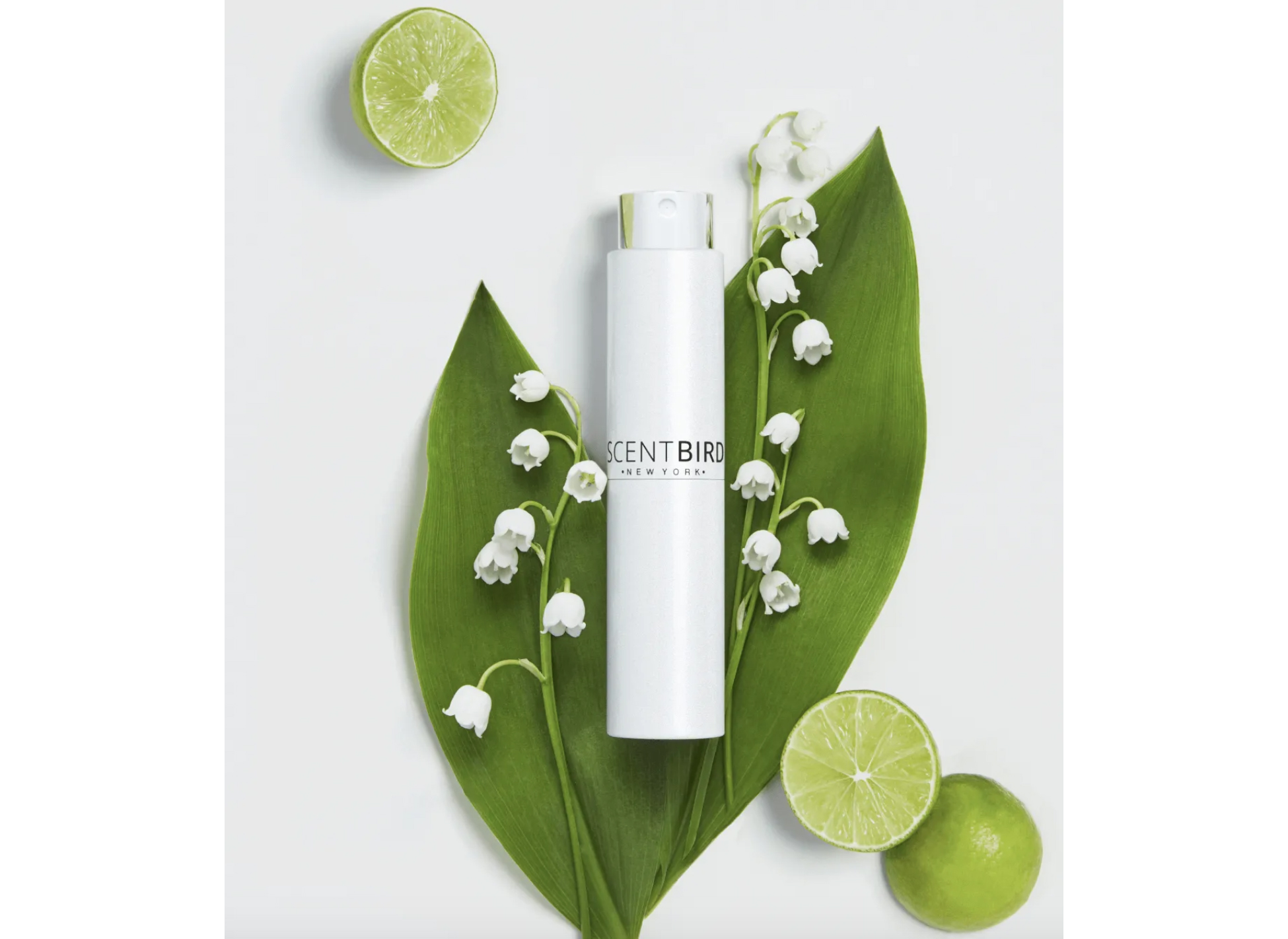 Scentbird spray on leaf and lime set up