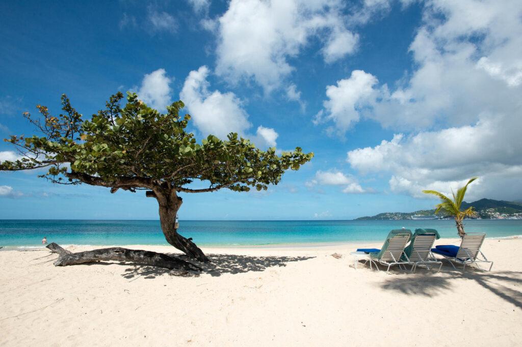 Beach at the Spice Island Beach Resort