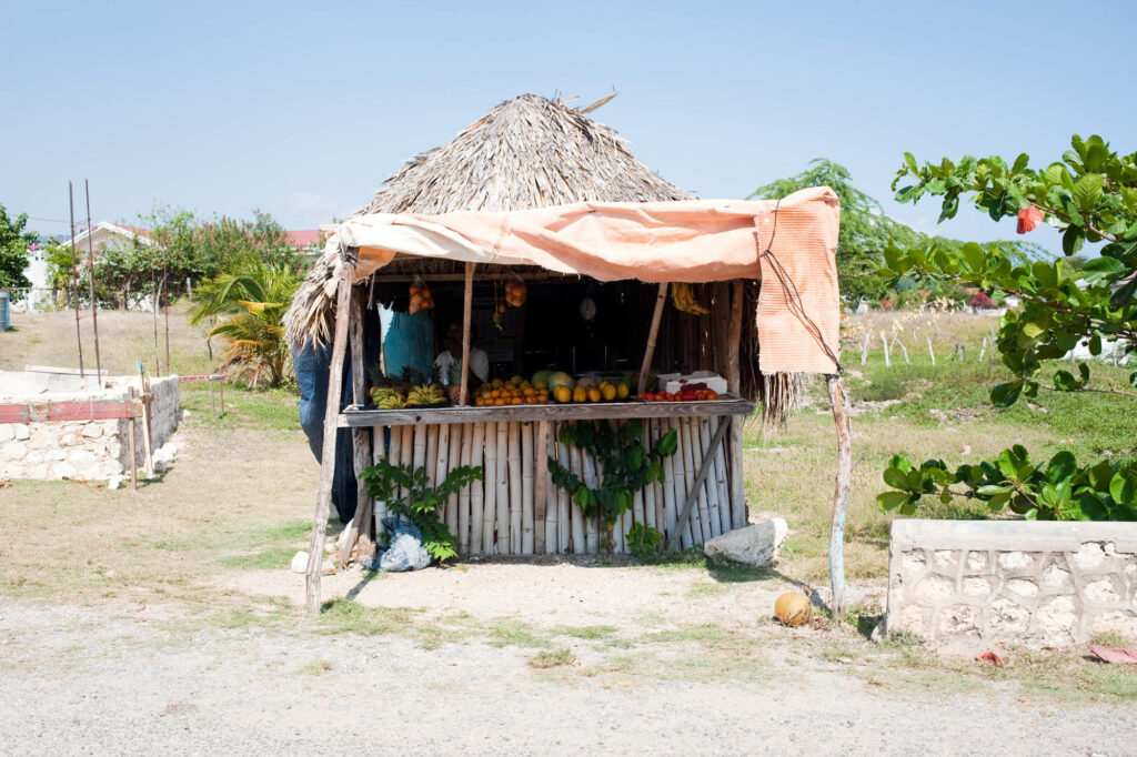 Fruit stand, South Coast, Jamaica
