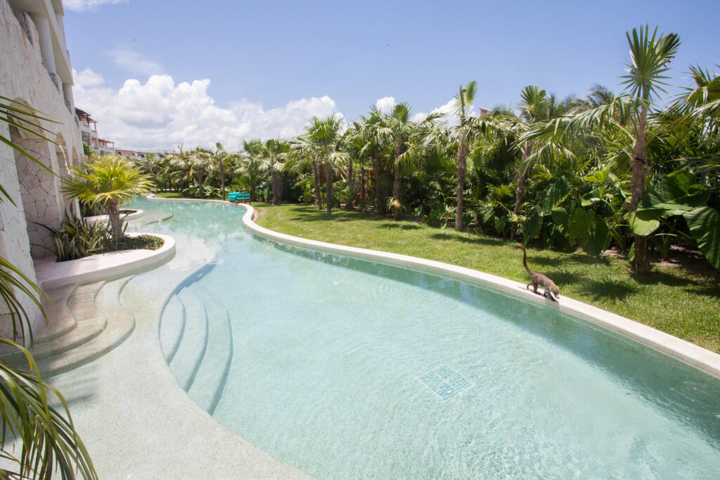 The Swim-Up Suite at the Secrets Maroma Beach Riviera Cancun