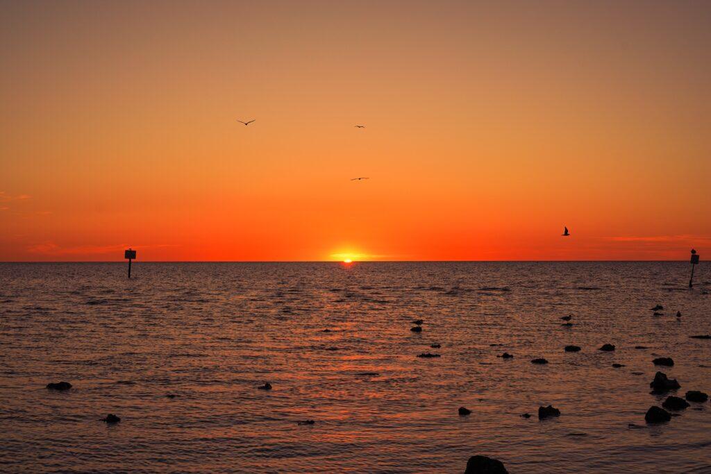 Pine Island at sunset