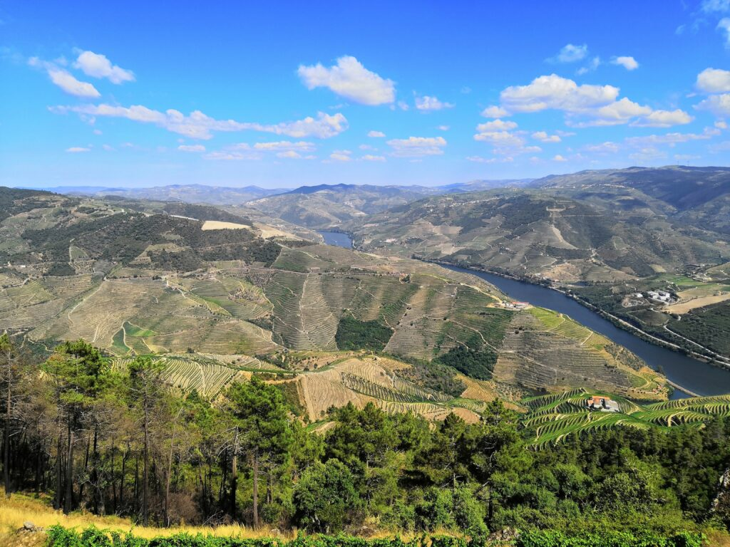 Douro Valley view