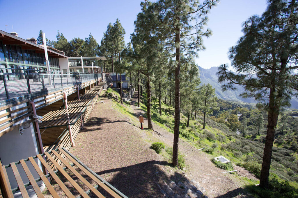 The Standard Room with Forest View at the Hotel Parador de Cruz de Tejeda