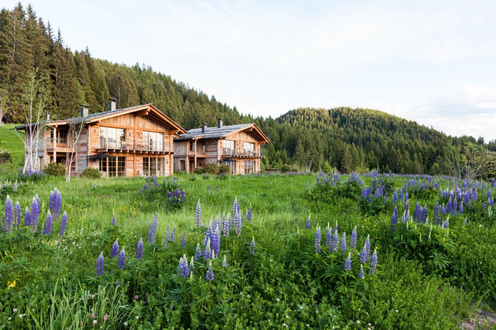 The San Luis Retreat Hotel & Lodges