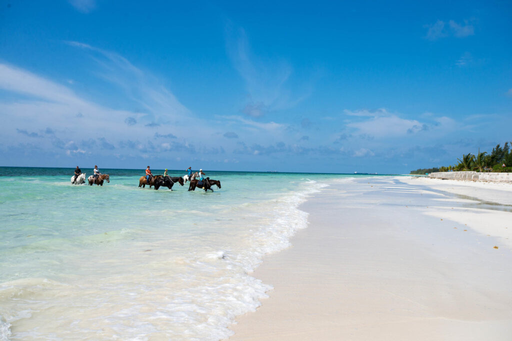 People riding horses in the Ocean in Bahamas