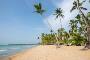 Beach at the Sublime Samana