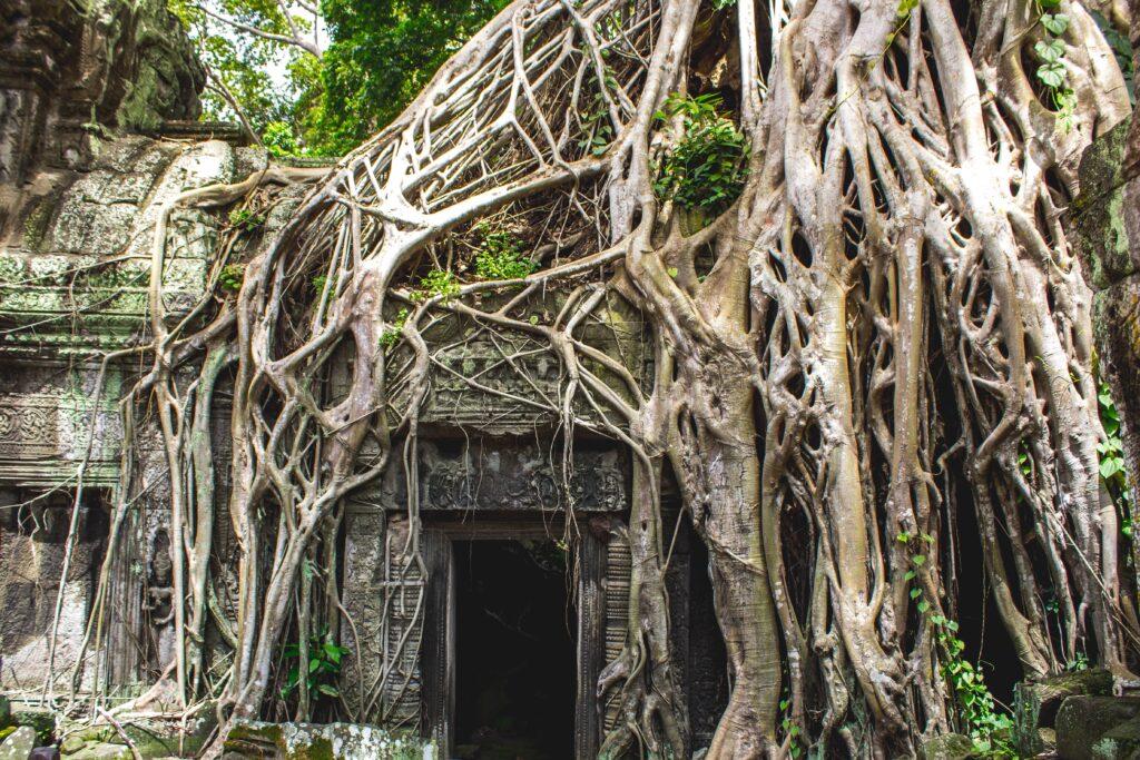 Angkor Wat, Krong Siem Reap, Cambodia