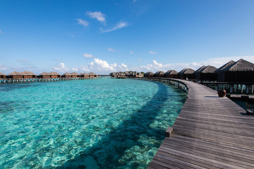 The Coco Bodu Hithi