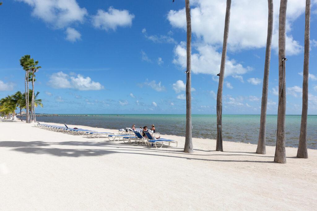 Beach at the Cheeca Lodge & Spa
