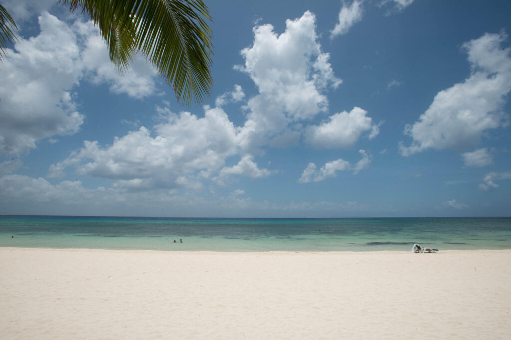 Beach at the Melia Cozumel Golf - All Inclusive