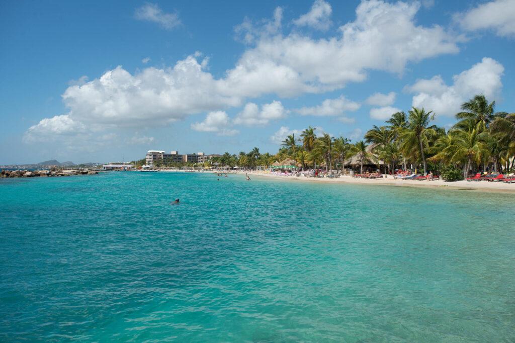 Beach at the Lions Dive & Beach Resort Curacao