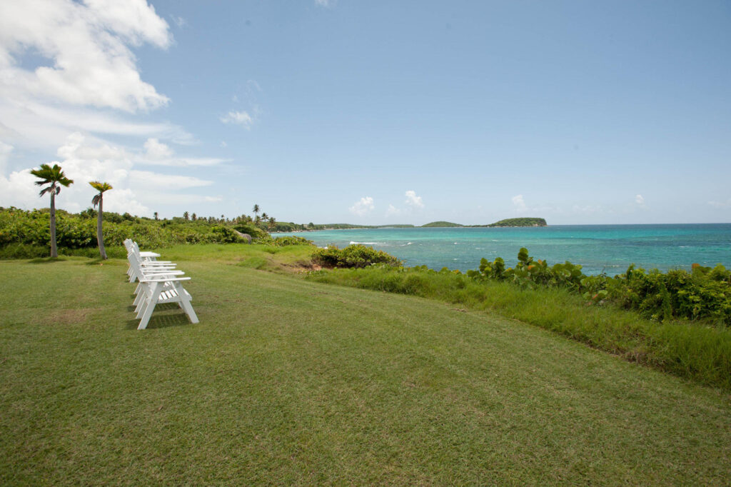 Grounds at the Blue Horizon Boutique Resort