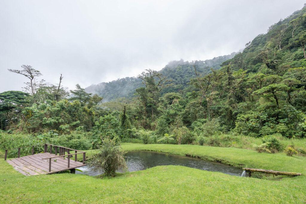 Grounds at the El Silencio Lodge & Spa